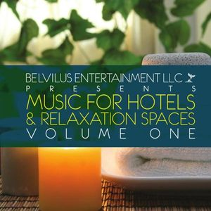 Music for Hotels & Relaxation Spaces 1 /  Various