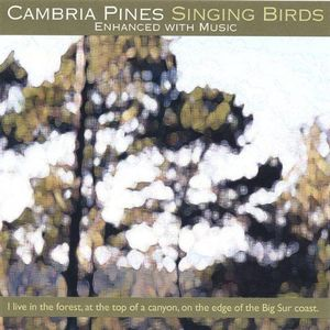 Cambria Pines Singing Birds