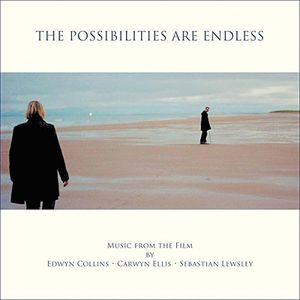 Possibilities Are Endless (Original Soundtrack) [Import]
