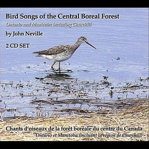 Bird Songs of the Central Boreal Forest Ontario &