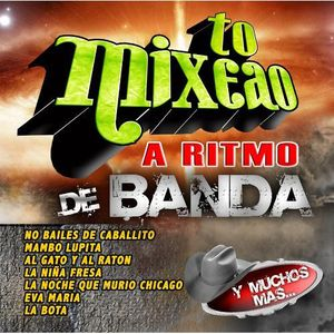 To Mixeao a Ritmo de Banda /  Various