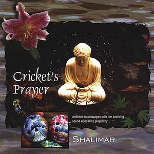 Crickets Prayer