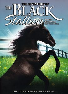 Adventures of the Black Stallion Season 3 [Import]