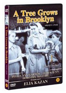 Tree Grows in Brooklyn (1945) [Import]