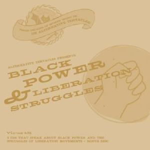 Black Power & Liberation Struggles /  Various