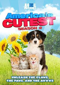 America's Cutest: Season 2