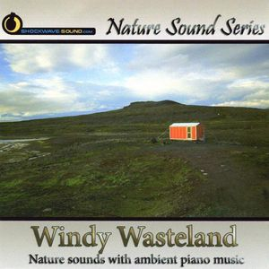 Windy Wasteland