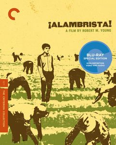 Alambrista (Criterion Collection)