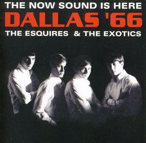 Now Sound Is Here: Dallas 66