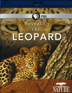 Nature: Revealing the Leopard