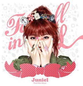 Fall in L [Import]
