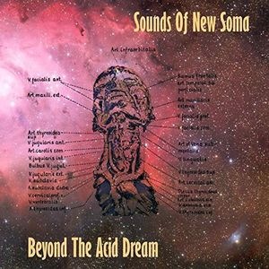 Beyond the Acid Dream [Import]