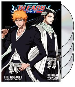 Bleach Uncut Box Set, Vol. 5 [Full Frame] [4 Discs] [Slim Pack] [Slipcase]