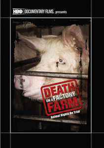 Death on a Factory Farm