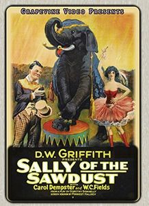 Sally of the Sawdust (1925)