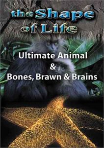 The Shape Of Life, Vol. 4: Ultimate Animal/ Bones, Brawn and Brains [Documentary]