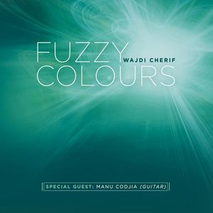 Fuzzy Colours