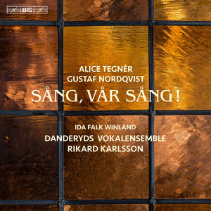 Tegner & Nordqvist: Song Our Song