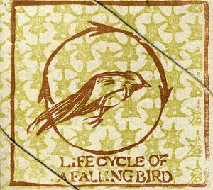 Life Cycle of a Falling Bird