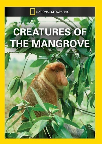Creatures of the Mangrove