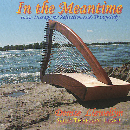 In the Meantime: Harp Therapy for Reflection & Tra