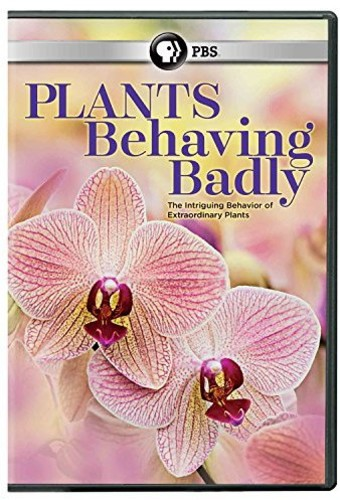 Plants Behaving Badly