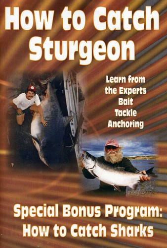 How to Catch Sharks & How to Catch Sturgeon