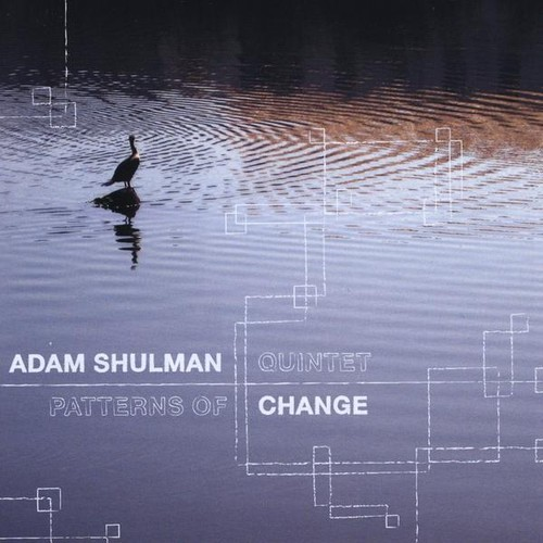 Shulman, Adam : Patterns of Change