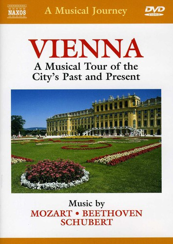 Musical Journey: Vienna Musical Tour City's Past