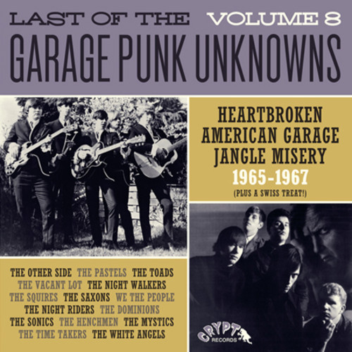 Last Of The Garage Punk Unknowns 8 /  Various