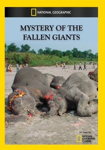 Mystery of the Fallen Giants