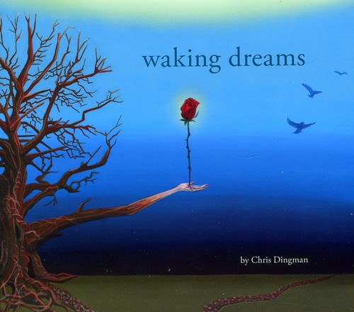 Waking Dreams