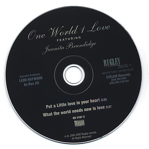 Put a Little Love in Your Heart/ What the World Nee