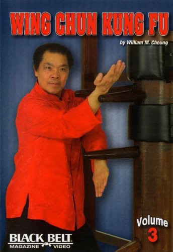Wing Chun Kung Fu with William M Cheung 3