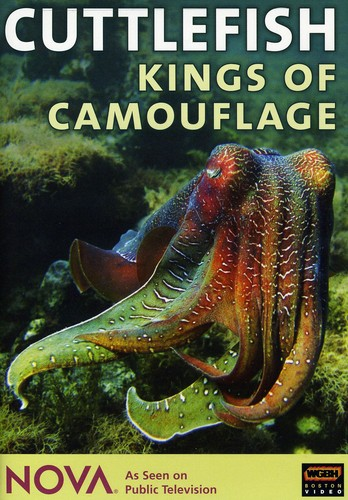 Nova: Cuttlefish: Kings of Camouflage