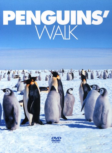Penguins Walk