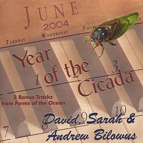 Year of the Cicada