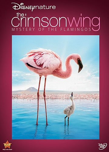 Disneynature: Crimson Wing - Mystery of Flamingo