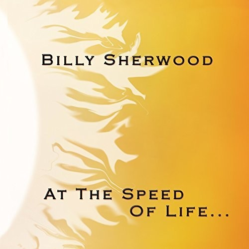 At The Speed Of Life [Import]
