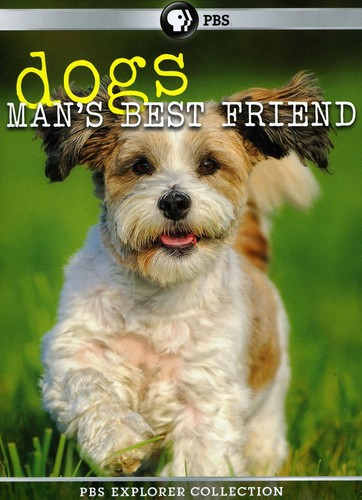 PBS Explorer Coll: Dogs: Mans Best Friend 4 Pack