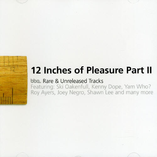 Twelve Inches of Pleasure 2 /  Various