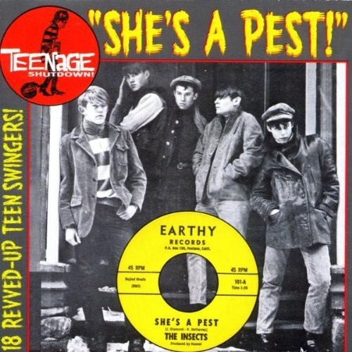 Teenage Shutdown 15: She's A Pest /  Various