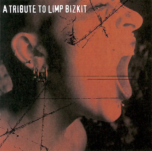 A Tribute To Limp Bizkit