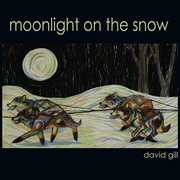 Moonlight on the Snow