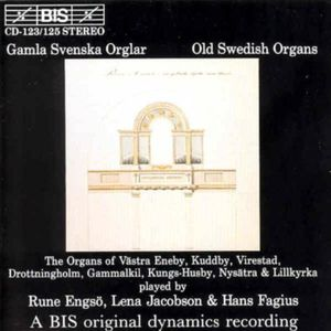 Old Swedish Organs /  Various