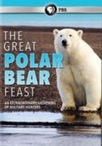 The Great Polar Bear Feast