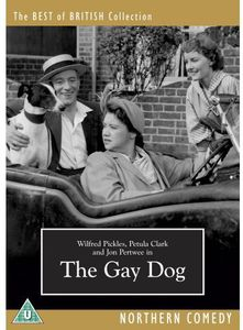 Gay Dog [Import]
