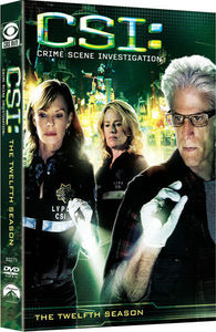 CSI: The Twelfth Season