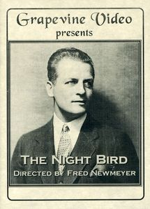 Night Bird (1928)