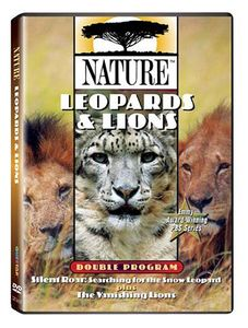 Nature: Leopards & Lions